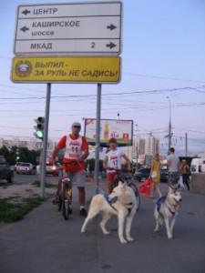 Веломарафон с собаками