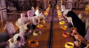 История гостиниц для животных
