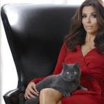 Ева Лонгория любит кошек