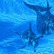 Разумные дельфины